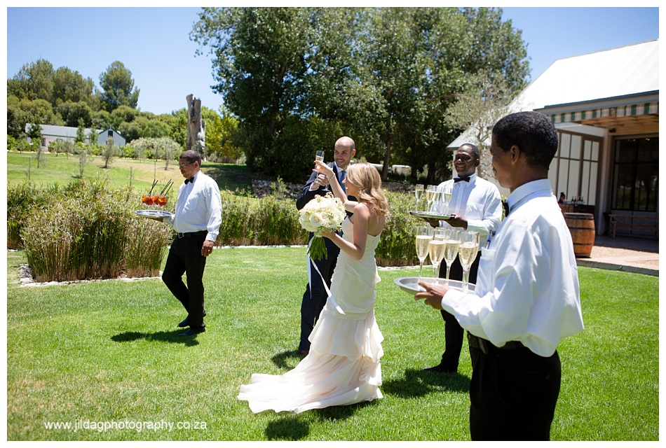Jilda-G-Photography-Boschendal-wedding_1155
