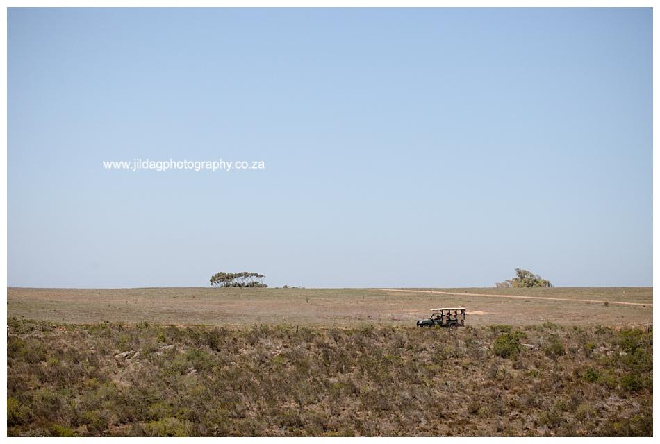 Jilda-G-Photography-safari-wedding-Garden_Route_Game_lodge_1860