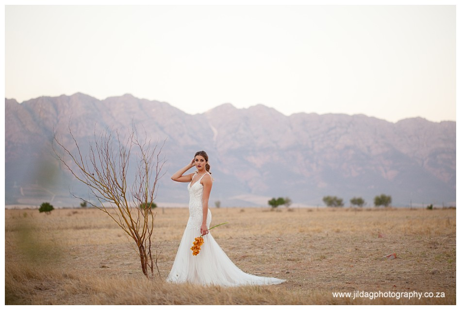 Jilda G Photography-tulbagh-wedding-Essere-lodge_2398