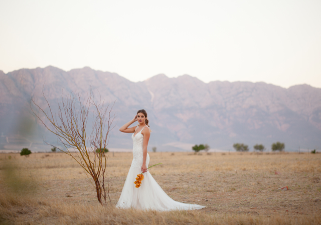 Tulbagh country wedding Venue