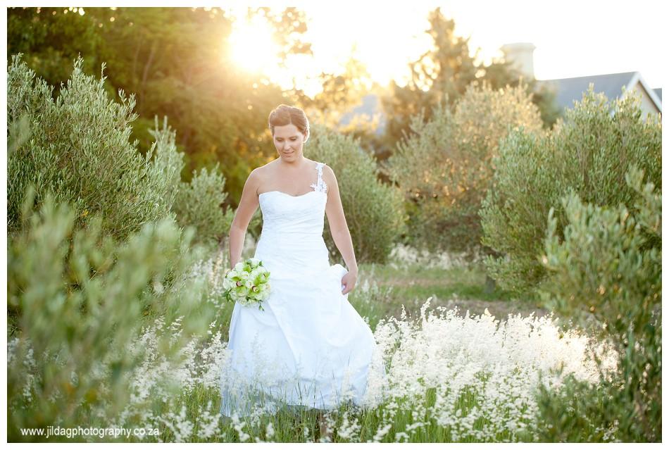 Glen Carlou - Stellenbosch wedding - Jilda G Photography (83)