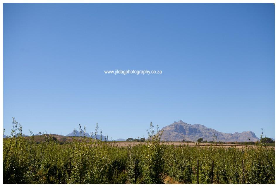 Jilda-g-photography-Cape-Town-wedding-photographer-Brnaissance_186