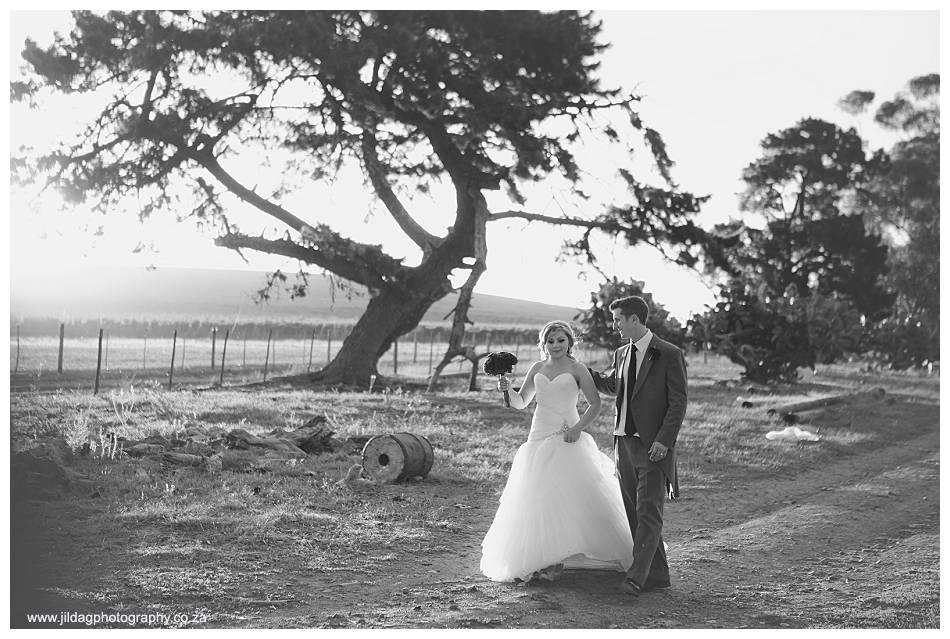Meerendal - Durbanville wedding - Alison & Adam (48)