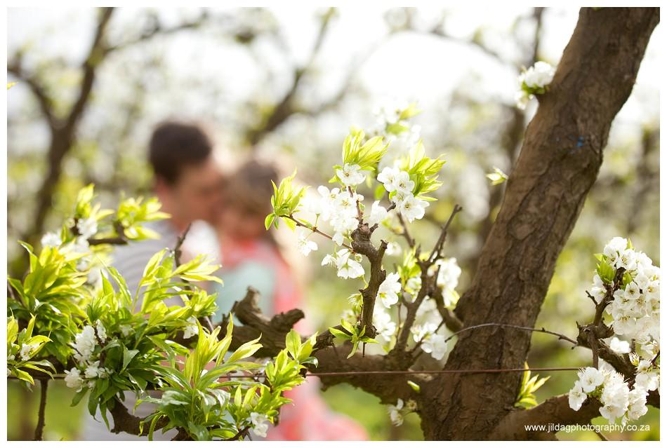 Perfect proposal - Brenaissance vineyards - Jilda G Photography (14)