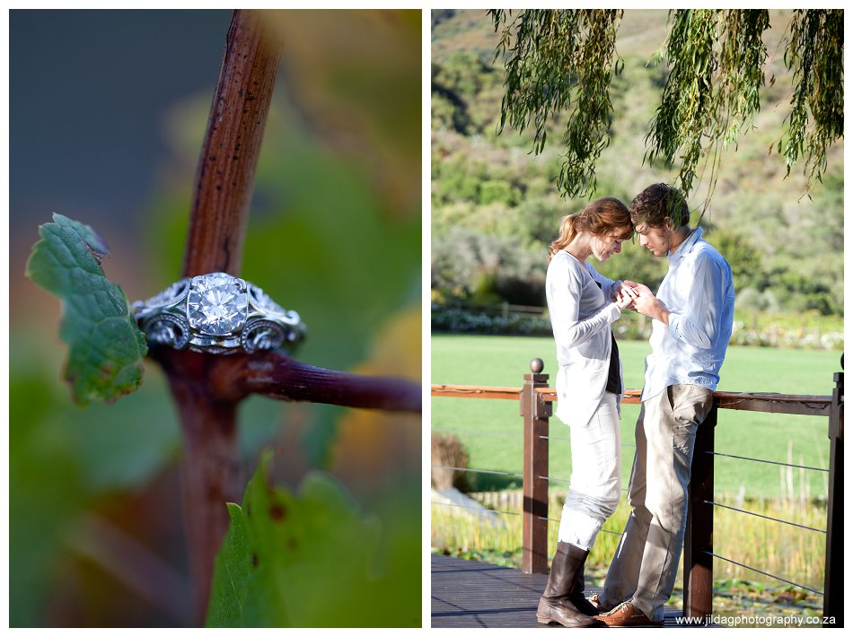 The proposal (3)